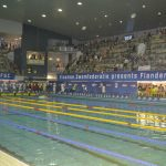 Flanders Swimming Cup - foto 9