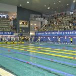 Flanders Swimming Cup - foto 7